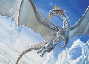 zzz ma dragon